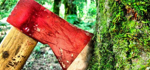 Вырубка-леса-как-бизнес.