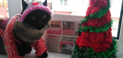 29-nastya-butrova-kokos