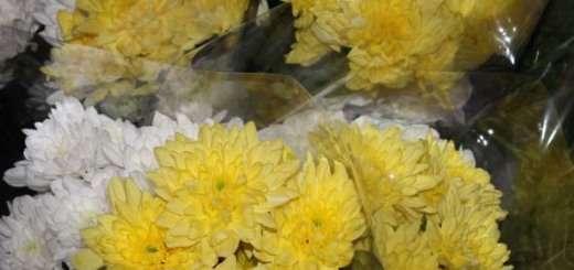 Цветы-награжденным