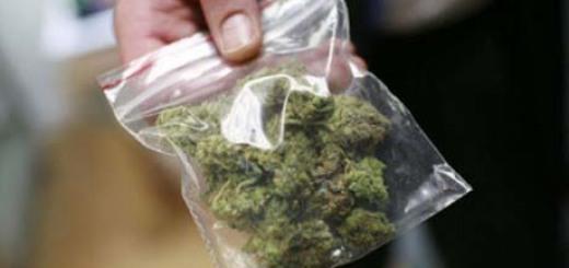 marihuana-izlechivaet-toshnotu-460x306