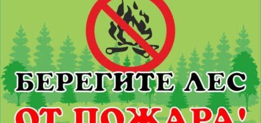 pozh2