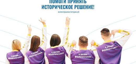 волонтерыконститутки