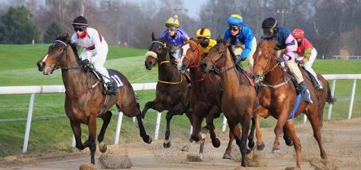 race-track-3049862_1280